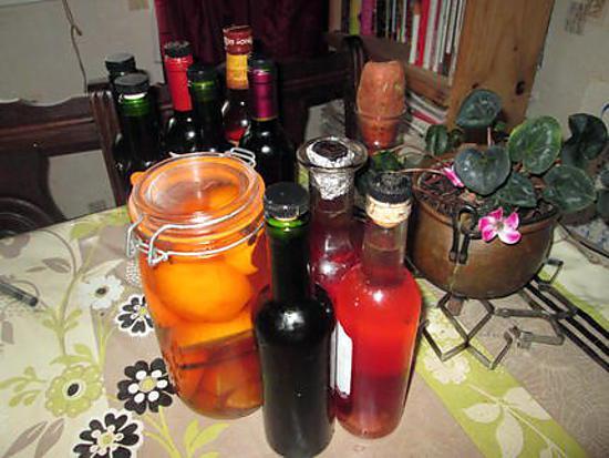 recette de vin d oranges orange du jardin de ma fille et vin aux pamplemousses au rhum ambr de. Black Bedroom Furniture Sets. Home Design Ideas