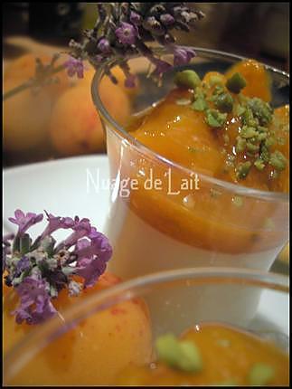 recette Panna Cotta à la Lavande et sa Compotée d'Abricots