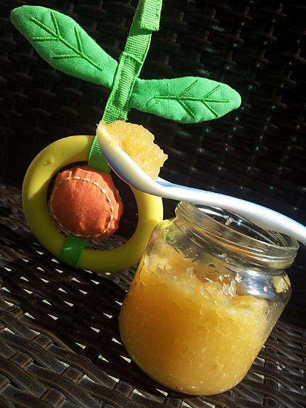 recette de compote de pomme poire biscuit pour b b. Black Bedroom Furniture Sets. Home Design Ideas