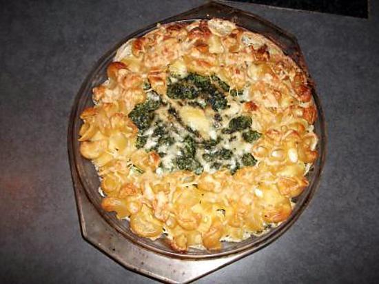 recette coudes a la florentine ( recette pour les enfants pour leur faire aimer les legumes )