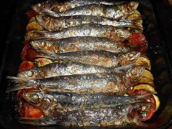 recette Tian de sardines aux courgettes et tomates