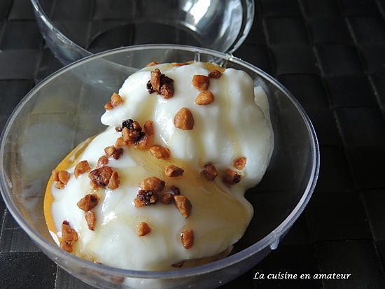 recette Yaourt glacé au miel