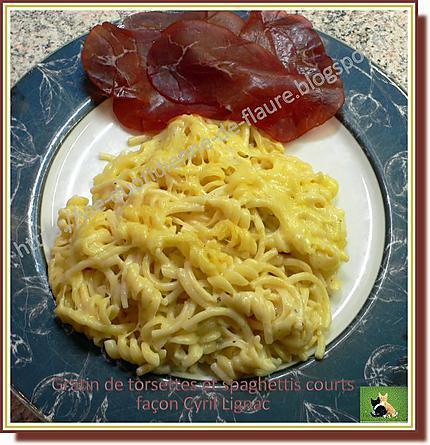 recette de gratin de torsettes et spaghettis courts fa on. Black Bedroom Furniture Sets. Home Design Ideas