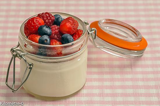 recette de panna cotta l 39 agar agar et aux fruits rouges. Black Bedroom Furniture Sets. Home Design Ideas