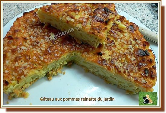 recette Gâteau aux pommes reinette du jardin
