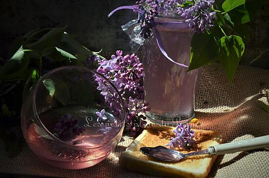 recette Gelée de fleurs de lilas du jardin
