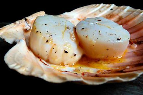 recette Noix de Saint-Jacques du marin