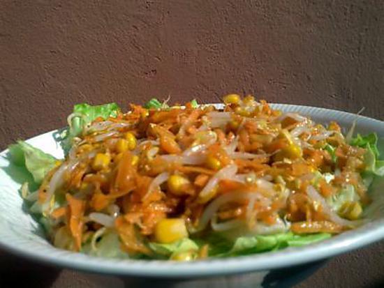 Les meilleures recettes de germes de soja - Cuisiner des pousses de soja ...