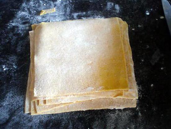 recette de pate 224 raviolis chinois won ton