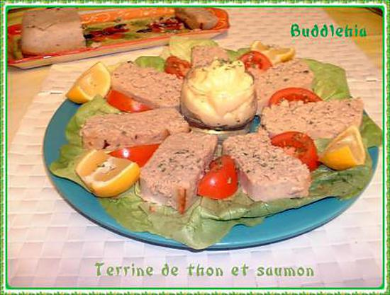 recette de terrine de thon et saumon. Black Bedroom Furniture Sets. Home Design Ideas