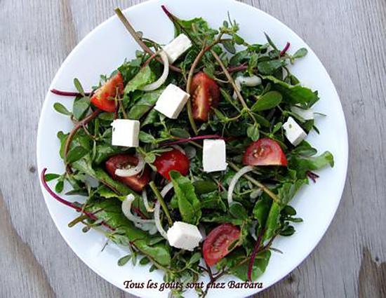 recette Salade de pourpier