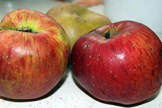 recette Du mal à vous endormir OCCASIONNELLEMENT : gardez vos épluchures de pommes et...