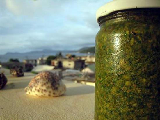 recette Pesto basilic-roquette du pauvre