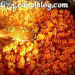 recette Carottes à la noix de coco