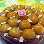 """recette Gâteau aux abricots, """" sans cuisson """"."""