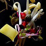 recette Salade de soja en robe de printemps