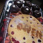 recette cake coco framboises de   mélayers et gateaux avec idée du blog saveurs et cuisine    et  !!!!!