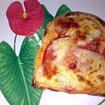 recette ~Tartine tomates mozzarella~