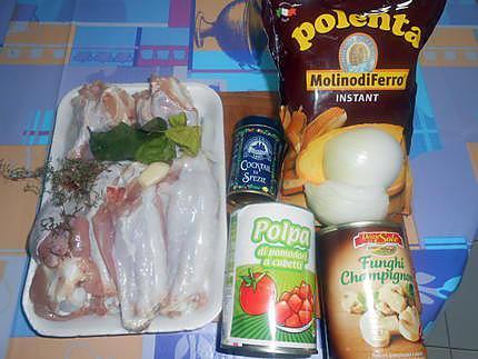 Ailes de dinde et polenta  (ragoût con ali di tacchino)  430