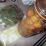 recette prunes au sel   de rephael et raisins groseilles a maquereaux congelés servant de glaçons avec boisson pétillante