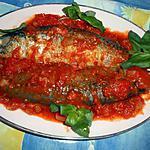 recette Maquereau aux tomates