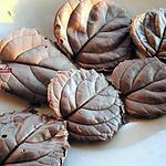 recette Feuille En Chocolat