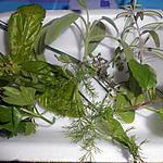 recette MELANGE D'EPICES ITALIENNES  (POUR TATIE QUI A BEAUCOUP D'HERBES DANS SON JARDIN)