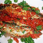 recette Hareng a la sauce tomate épicée