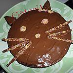recette Notre matou au chocolat coloré