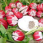 recette Fleurs de radis à la croque au sel (idée décoration)