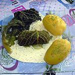 recette Feuilles de chou roulées au saumon, sauce moutarde à l'aneth