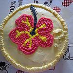 recette merveille aux fruits hibiscus