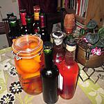 recette vin d oranges   orange du jardin de ma fille et vin aux pamplemousses    au rhum ambré   de katceleau
