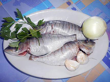 Marbres al sugo piquante (poisson) 430