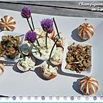 recette Petits champignons rosés de Paris au tatare