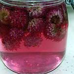 recette Vinaigre aromatisé aux fleurs de ciboulette