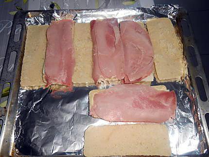 Croque panini 430