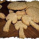 recette Ooo Croustillants Avoine & cacahuètes ooO