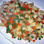 Salade russa(recette portugaise)macédoine de légumes