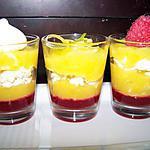 recette Verrines Citron / Framboise