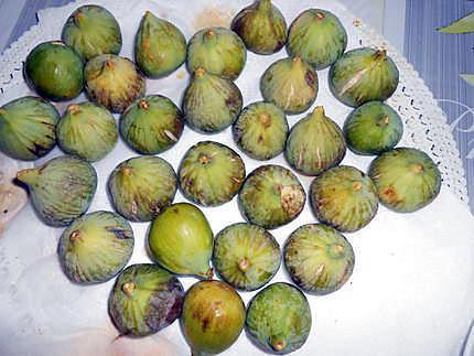 Tarte aux figues meringuée 430