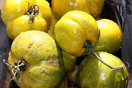 Recette de coulis de tomates vertes vari t vertes z br es - Cuisiner des tomates vertes ...