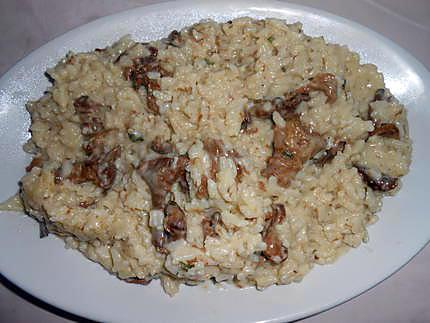 Risotto aux girolles 430