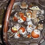 recette salade des bois