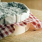 recette Tarte endives, camembert et lardons