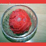 recette Sorbet Rhubarbe & Fraise