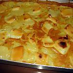 recette gratin de pommes de terre,protéines