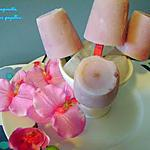 recette ~Sucettes glacées au yogourt à la vanille et aux canneberges~