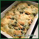 recette Gratin de Torti au Saumon et à la Sauce Verte (épinards)