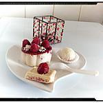 recette panna cotta chocolat blanc framboise et sa boule coco façon rafaello à la framboise